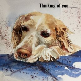 Thinking dogs animals personalised online greeting card