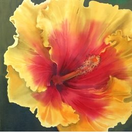 Photography Hibiscus, flower, floral, silk painting personalised online greeting card