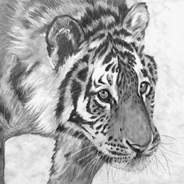 Art artwork tiger animals wildlife monochrome for-him for-her personalised online greeting card