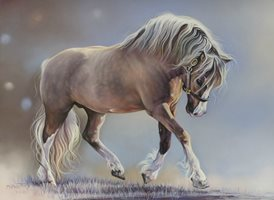 Art equine, horse, pony, stallion, palomino, welsh cob, cob animals z%a personalised online greeting card