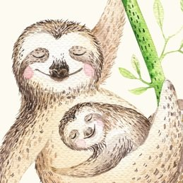 General Animal, Sloth, Wild Life, Amazon, Rainforest,  birthday personalised online greeting card