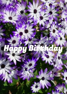 birthday Flowers, Purple,  personalised online greeting card