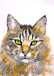 General artwork cat animals pets for-him for-her personalised online greeting card