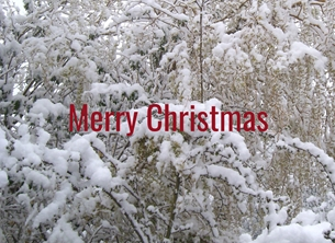 Christmas winter snow for-him personalised online greeting card