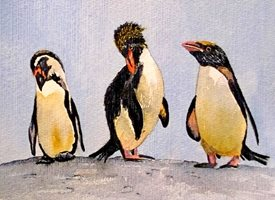 art artwork penguins zoo  wildlife birds for-him for-her personalised online greeting card