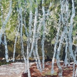 Art Birches, Grove, Copse, Woods z%a personalised online greeting card