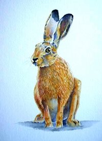 General artwork hare animals wildlife for-him for-her personalised online greeting card