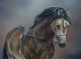 Art  greeting cards by Maureen Prottey equine, horse, pony, welsh cob, cob dun animals z%a The Champion