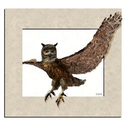 General owl framed painted wild animals birds personalised online greeting card