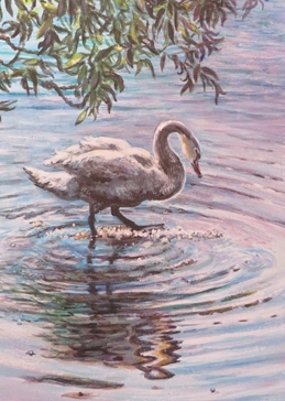 Art Swan, bird, water,  personalised online greeting card
