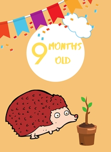 Hedgehog,Banner,Milestone 9 months,Colourful.Plant, personalised online greeting card