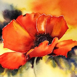 General poppy, red, bright red, floral, flower, oriental poppy personalised online greeting card
