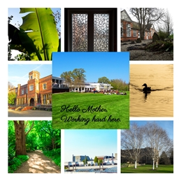 Photography UoR university of reading students mother views campus personalised online greeting card