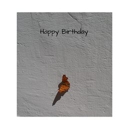 Birthday  butterflies orange shadows personalised online greeting card