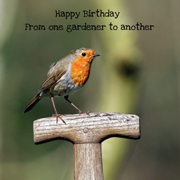 Gary Green Eyes Gardener Robin Birthday Robin Spade personalised online greeting card
