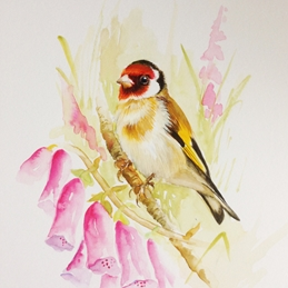 Wildart Goldfinch and Foxgloves art His or her birthday / bird personalised online greeting card