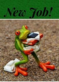 job frog z%a personalised online greeting card