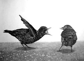 General artwork blackbirds birds wildlife monochrome for-him for-her personalised online greeting card
