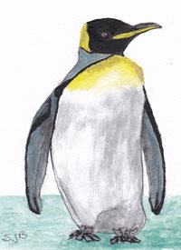 General Animals      Penguin personalised online greeting card