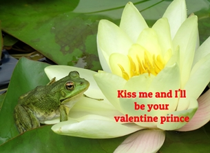 Valentine Valentines frogs animals water lily ponds princes personalised online greeting card