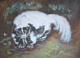 General skunk, skunks, animals, cute animals, cuddly personalised online greeting card