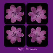 Birthday purple black flowers personalised online greeting card