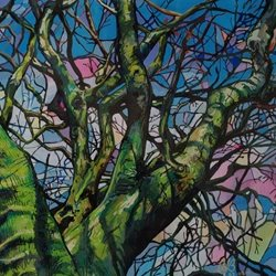 Stained glass trees: Winter beech
