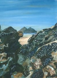 JennyGardnerArt Mussels art Coast, Mussels, Rocks, Beach, Coast, Seascape, Cornwall, Coast, Holywell z%a personalised online greeting card