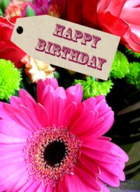 Quirkytags...  FLOWER GIRT birthday FLOWERS  z%a personalised online greeting card