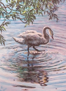 Little Liz Happy Art Time to reflect Art Swan, bird, water,  personalised online greeting card
