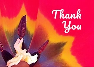 thank tulip red yellow orange white black detail nature for-him for-her   personalised online greeting card