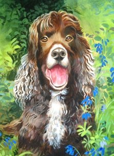 artist  greeting cards by Mary Dodd Art Spaniel bluebells dog birthday art card painting artist anniversary dogs Spaniel in the Woods