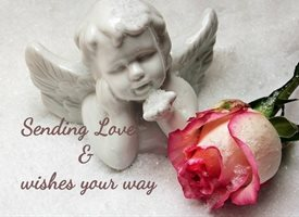 General cherub roses z%a personalised online greeting card
