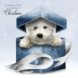 Gift Boxed Westie