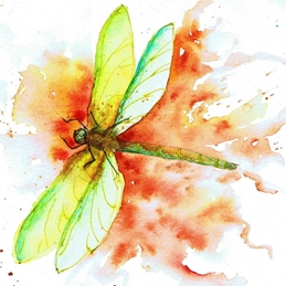 General dragonfly, green, abstract personalised online greeting card