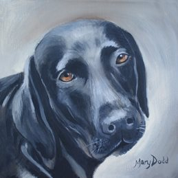 Mary Dodd Art Ellie  art Black Labrador painting art card artist portrait dog dogs personalised online greeting card