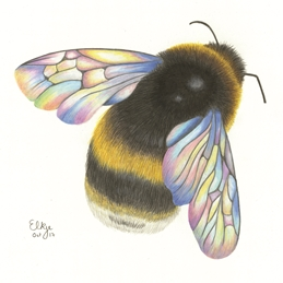 Elkie Wild Art On the Wings of a Bumblebee art general bumblebee, bee, for her, for him, birthday, mothers day, easter, sympathy, sorry personalised online greeting card