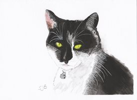 General Art Black and White Cat personalised online greeting card
