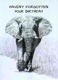 EmilyJane Don't Forget Birthday Birthday artwork elephant animals wildlife monochrome e for-him for-her personalised online greeting card