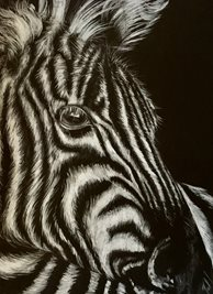 Art By Three  Zebra Art zebras white black animals zoos safari wildlife him her kids all occasions mums dads for-him for-her for-child personalised online greeting card