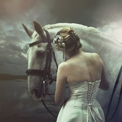 general horse equine bride wedding white gown equestrian animal  personalised online greeting card