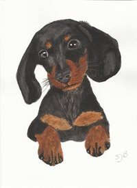 Art Black and tan Dachshund Dog  personalised online greeting card