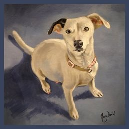 Mary Dodd Art Maisy Jayne artist  Jack Russel painting art card artist birthday anniversary dog dogs personalised online greeting card