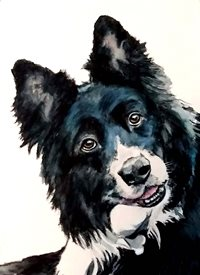 EmilyJane Alfie General artwork dog animals pets for-him for-her personalised online greeting card