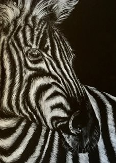 Art By Three  Zebra  personalised online greeting card
