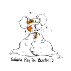 General guinea pig blanket cute funny animal cartoon  personalised online greeting card