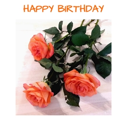 EmilyJane Three Birthday Roses Birthday roses,flowers,leaves,orange,red,green,for-her personalised online greeting card