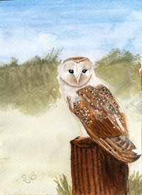 art Barn owl woodland animals  personalised online greeting card