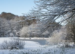 Chappers Photography Winter by the Lake Photography Lake, snow, winter, christmas, ice, cold, landscape, water personalised online greeting card