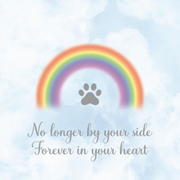 Pet Loss Sympathy Card - Can be personalised